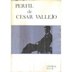 Perfil de César Vallejo