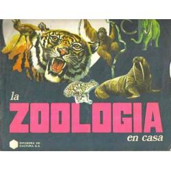 La zoología en casa
