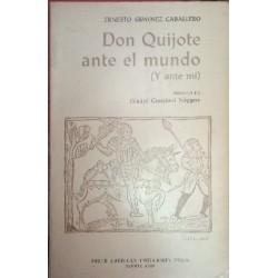Don Quijote ante el mundo (y ante mí).